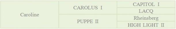 Abstammung-Caroline-e1342821527720 in Fohlen 2012